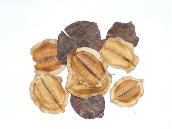 Picture of Jacaranda - přírodní (0,5kg)