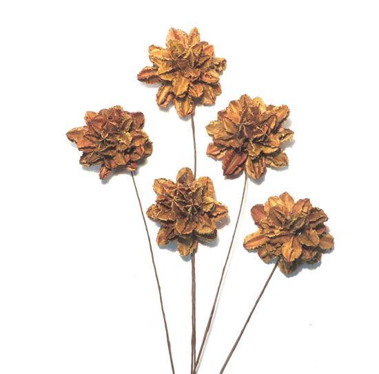 Obrázek z Arjun flower - přírodní, na stonku (10ks)