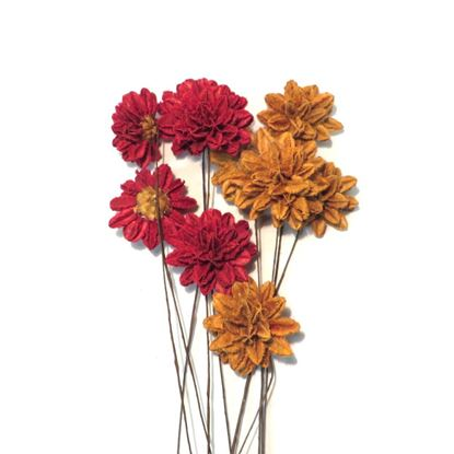 Obrázok z Arjun flower - farebná, na stonke (10ks)