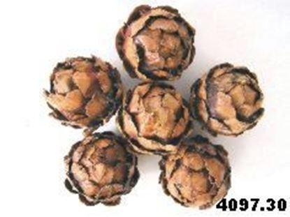 Picture of Strobus ball 5cm (10ks)