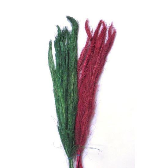 Obrázek z Khejur sikha (10ks)