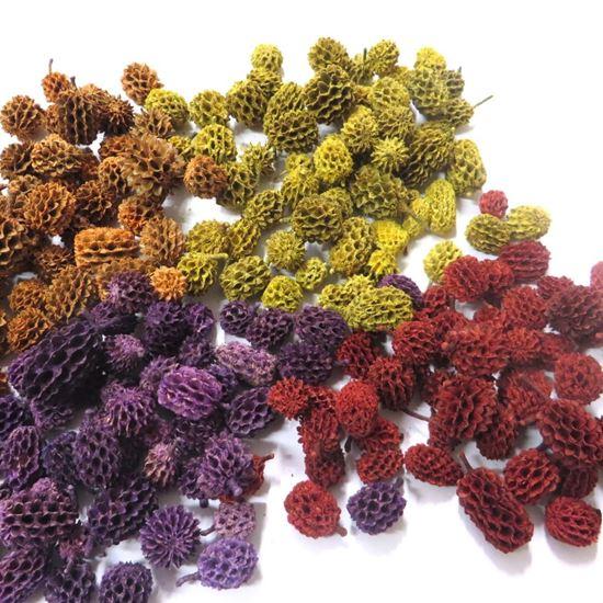 Obrázok z Casurina - farebná (1kg)