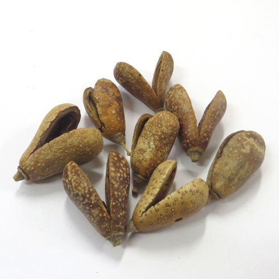 Picture of Mike fruit (Bagon fruit) - přírodní (50ks)