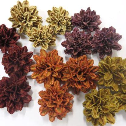 Obrázok z Arjun flower - farebná (40ks)