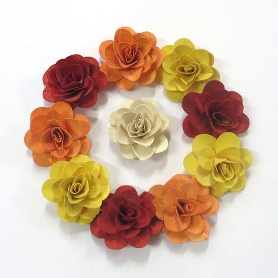 Picture of Deco růže střední - barevná (50ks)