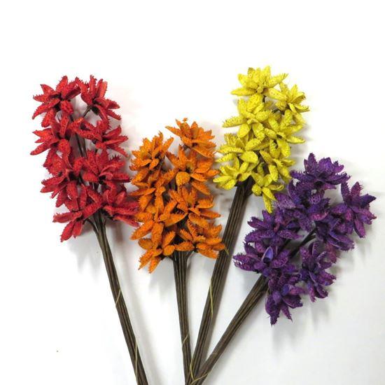 Obrázek z Květ Dahlia media - barevný (8ks)