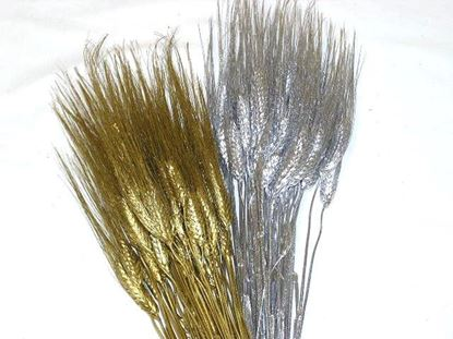 Obrázok z Grano triticum (pšenica) - zlatá, strieborná (zväzok)