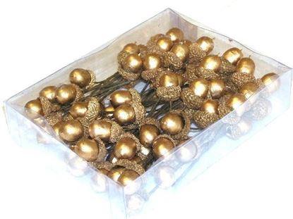 Obrázek Žaludy zlaté - box 72 ks