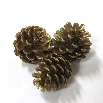 Obrázek Blue pine - šišky - zlatá, stříbrná (20ks)
