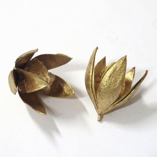 Obrázok z Wild lily - zlatá, strieborná (20ks)